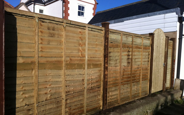 Chichester: New garden fencing - After
